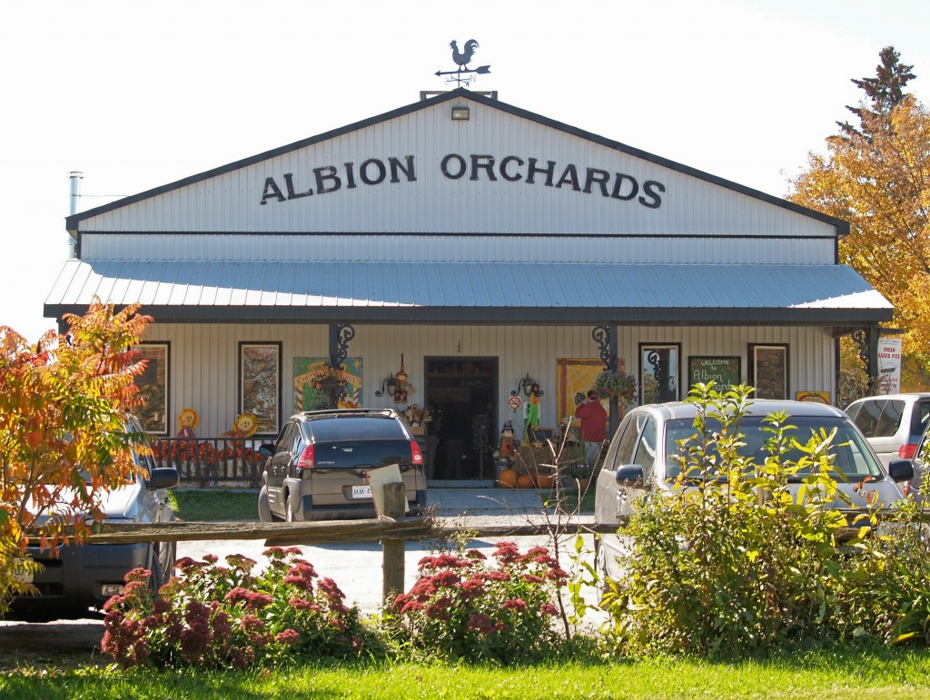 Farm Fresh Apples, Albion Orchards Country Store