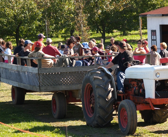 Students ride ain wagon apple orchard tour