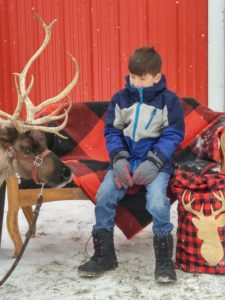 Reindeer Event at Albion Orchards